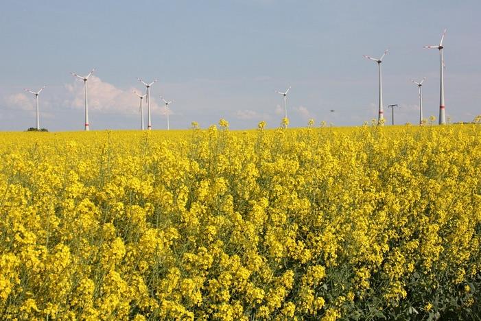 Dos nuevos arbitrajes contra España en relación con las renovables