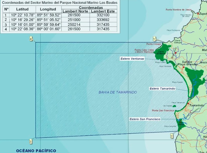 N. Boeglin: Ciadi, incompetente parcialmente en arbitraje de Las Baulas