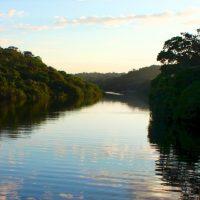 Extracción petrolera en la Amazonía peruana, foco de arbitrajes y enfermedad